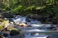 Flusslauf mit Langzeitbelichtung